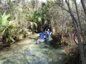 Juniper Springs canoers