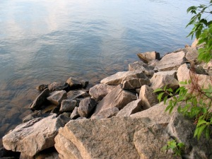 Rocks at the edge of West Point Lake