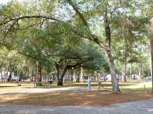 Salt Springs RV camping area