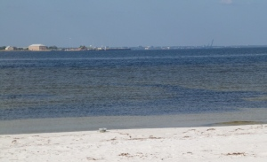 Pensacola Bay from the picnic area
