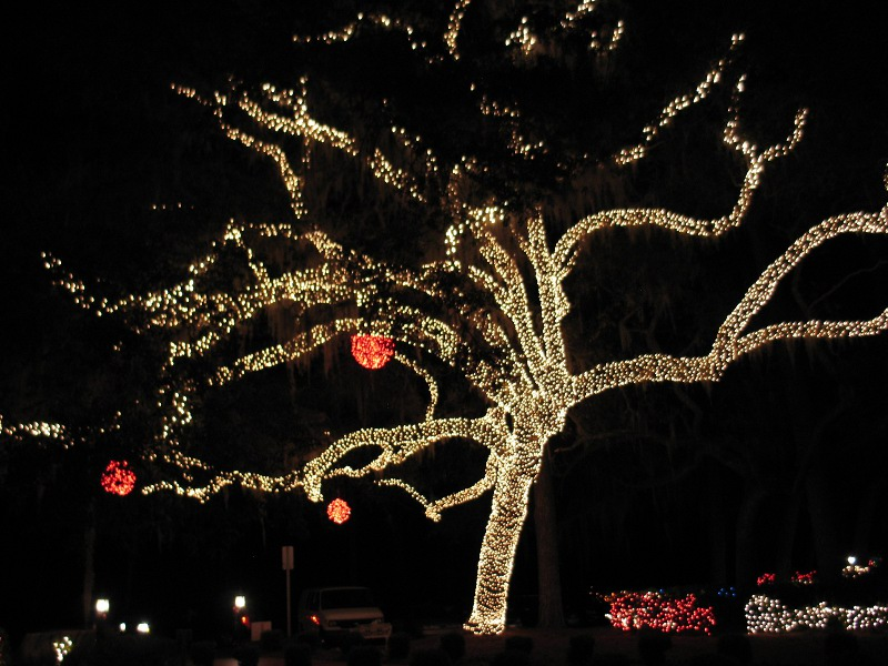 At the Stephen Foster State Park Festival of Lights in December 2011. - Stephen Foster State Park Tinycamper's Blog