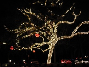 At the Stephen Foster State Park Festival of Lights in December 2011.