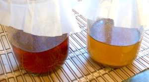 Infusing cayenne and ginger oils for an arthritis cream