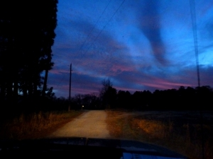 Our little dirt road