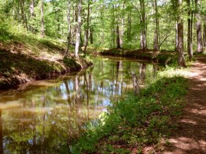 Smooth, scenic trail near the old gristmill site