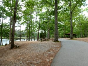 Lakeside tent sites