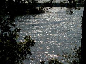 Sunlight  glinting on water