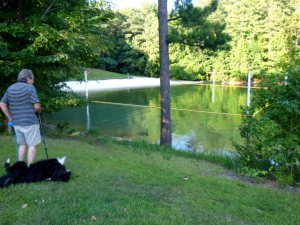 Ron with Sheba rolling in the grass by one of the little swimming beaches.