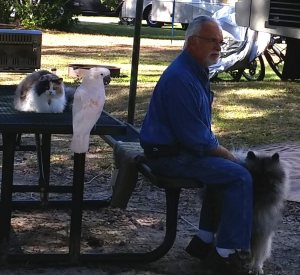 This man and his wife are camping with a cat, dog, and 22 year old bird.