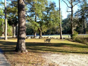 The front of the park facing the county road.