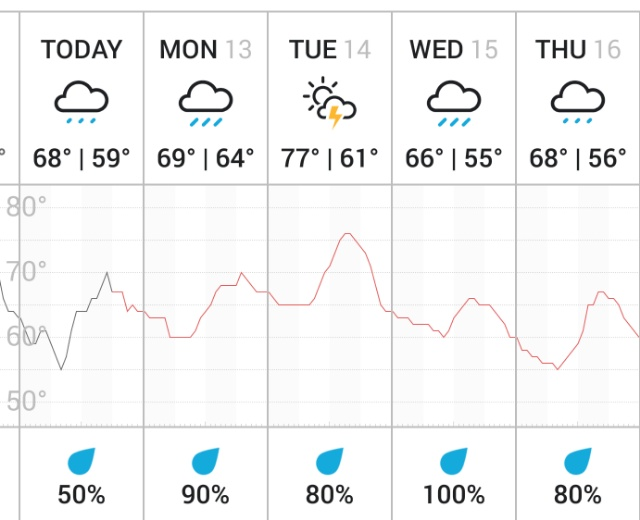 Weather only a mushroom lover could love